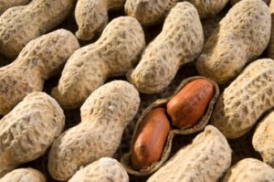 should-pregnant-women-avoid-peanuts