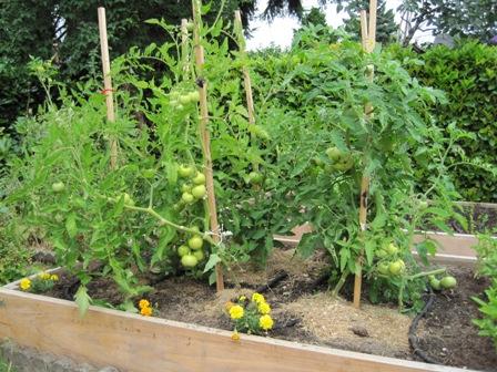 Garden Design: Garden Design With Organic Gardening With Creative