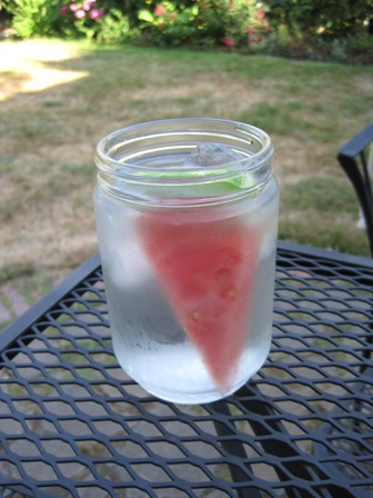 glass of water infused with watermelon