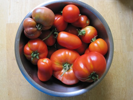 ideas and recipes for garden tomatoes