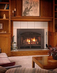 Fire Place Inserts Wood Pellet Or Gas