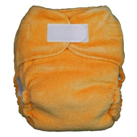 thirsties fab fitted cloth diaper