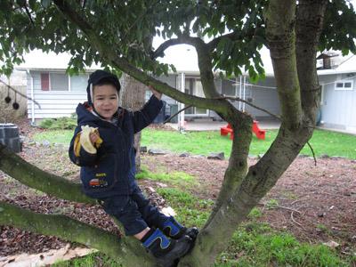 A child's garden spot