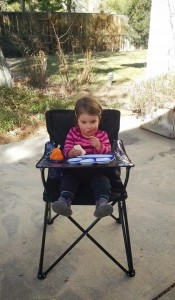 The Portable High Chair